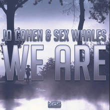 Jo Cohen &  Whales - We Are