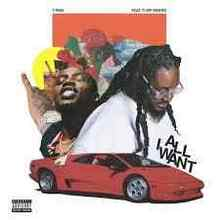 T-Pain feat. Flipp Dinero - All I Want